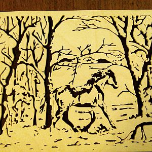 Faces in the woods