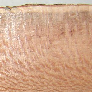 Mystery Wood-Side Grain