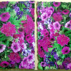 Purple flowers x 2